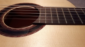Rosette and fretboard details